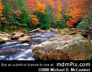 Meadow Run at Ohiopyle State Park, Pennsylvania picture 027 - October 25, 2006