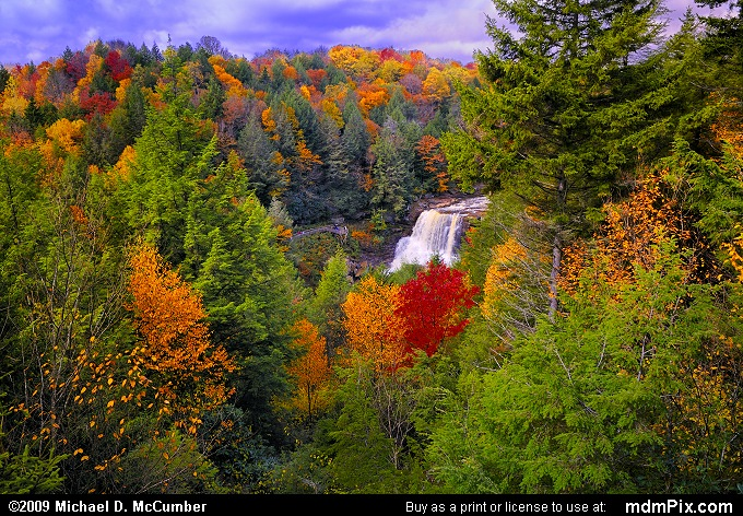 Gentle Trail Overlook with Red Spruce and Fall Color