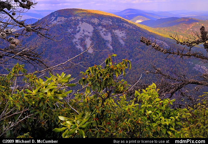 North Fork Mountain Picture 036 October 13 2009 From