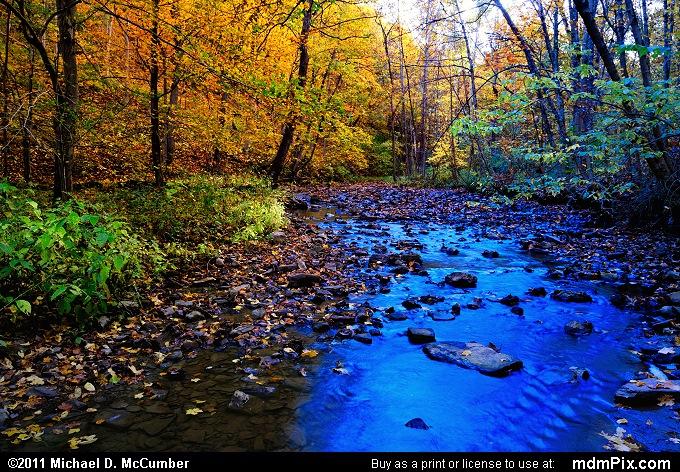 Cedar Creek Picture 006 October 12 2010 From Cedar