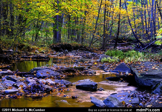 Cedar Creek Picture 018 October 12 2010 From Cedar