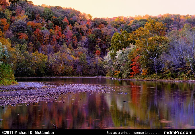 Fall Foliage and Youghiogheny River at Cedar Creek Park