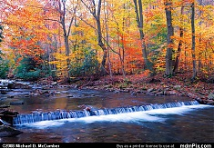 Bursts of Autumn Color along Scenic Dunbar Creek