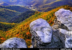 Pillars of Tuscarora Sandstone on North Fork Mountain