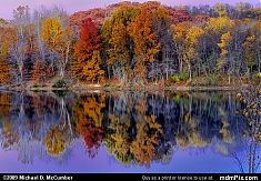 Hereford Manor Lake Fall Color