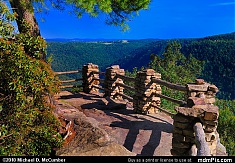 Coopers Rock Scenic Overlook Rustic Guardrails