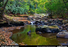 Dunbar Creek and Black Sandstone Rocks