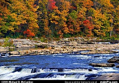 Ferncliff Peninsula's Autumn Color at Ohiopyle State Park