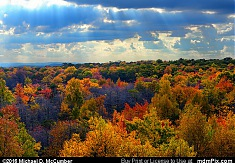 Mount Davis High Tower's Fall Foliage View