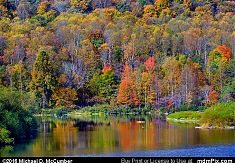 Tapestry of Autumn Color at Mill Run Reservoir