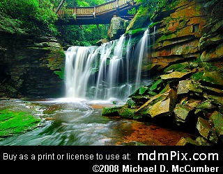 Elakala Falls Picture