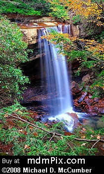 Cucumber Falls (Waterfalls) picture
