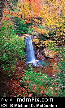 Cucumber Falls (Waterfalls) picture