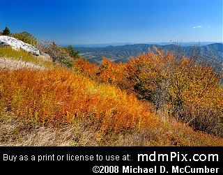 Spruce Knob Picture
