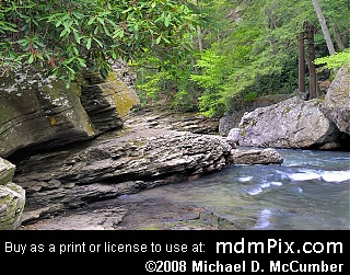 Meadow Run (Creeks) picture