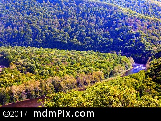 LH Trail's Youghiogheny River Gorge Vista (Overlooks) picture