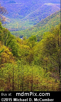 Kentuck Overlook (Overlooks) picture
