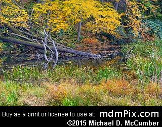 Jones Mill Run (Creeks) picture