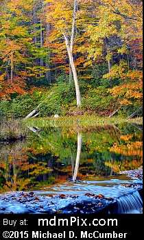 Jones Mill Pond (Ponds) picture