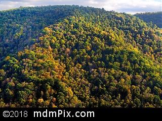 Chestnut Ridge (Ridges) picture