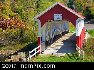Barronvale Covered Bridge (Covered Bridges) picture