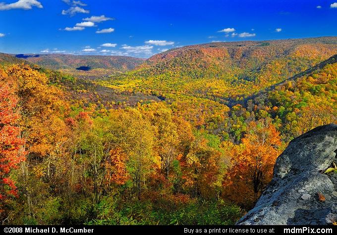 View from Baughman Rock Vista Overlook