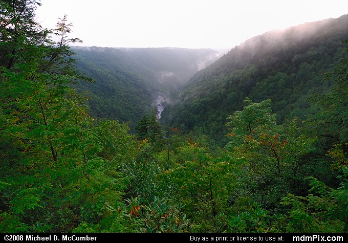 Blackwater Canyon (Blackwater Canyon Picture 011 - September 3, 2006 from Blackwater Falls State Park, West Virginia)