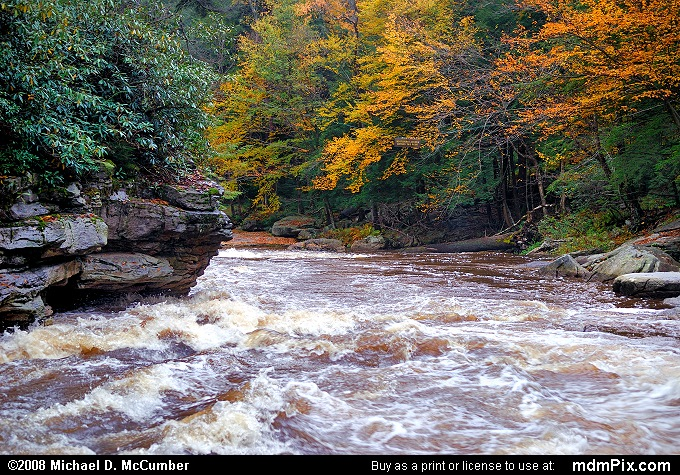 Blackwater River (Blackwater River Picture 009 - October 7, 2006 from Blackwater Falls State Park, West Virginia)