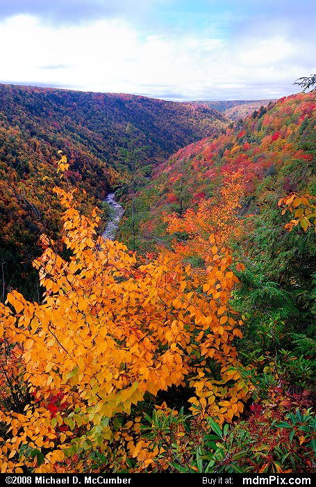 Pendleton Point Overlook (Pendleton Point Overlook Picture 014 - October 7, 2006 from Blackwater Falls State Park, West Virginia)