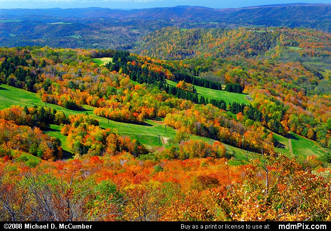 Canaan Valley Ski Resort Slopes (Canaan Valley Ski Resort Slopes Picture 020 - October 8, 2006 from Canaan Valley State Park, West Virginia)