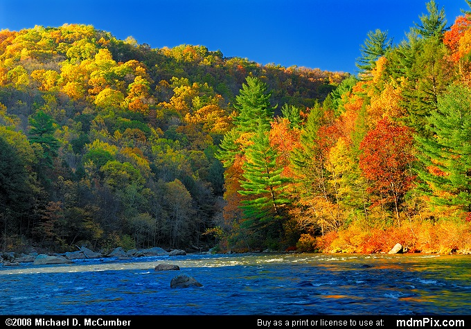 Youghiogheny River (Youghiogheny River Picture 095 - October 21, 2006 from Ohiopyle State Park, Pennsylvania)