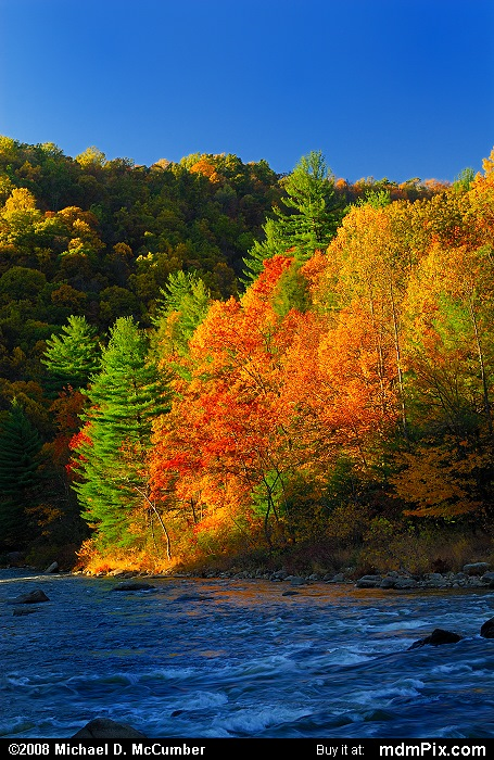 Ferncliff Peninsula (Ferncliff Peninsula Picture 104 - October 21, 2006 from Ohiopyle State Park, Pennsylvania)