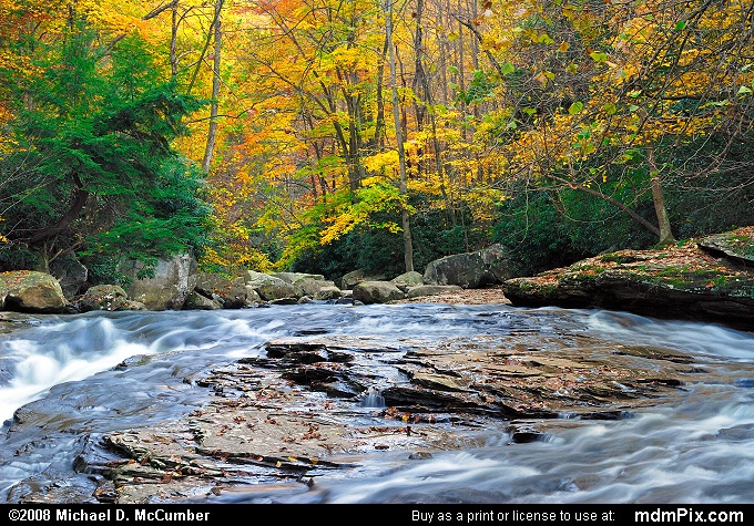 Meadow Run (Meadow Run Picture 123 - October 21, 2006 from Ohiopyle State Park, Pennsylvania)