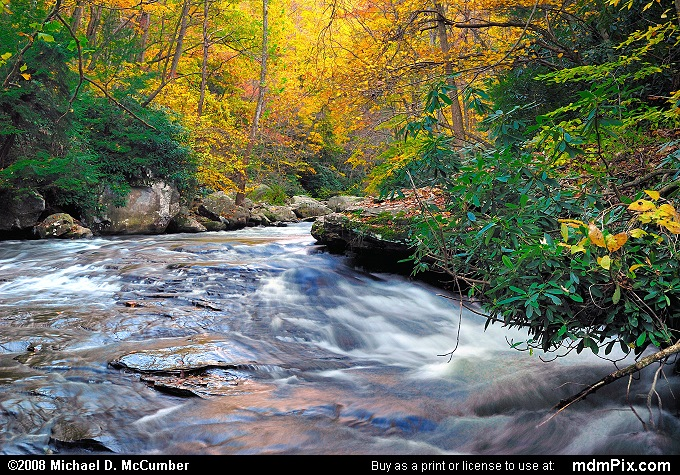 Meadow Run (Meadow Run Picture 124 - October 21, 2006 from Ohiopyle State Park, Pennsylvania)