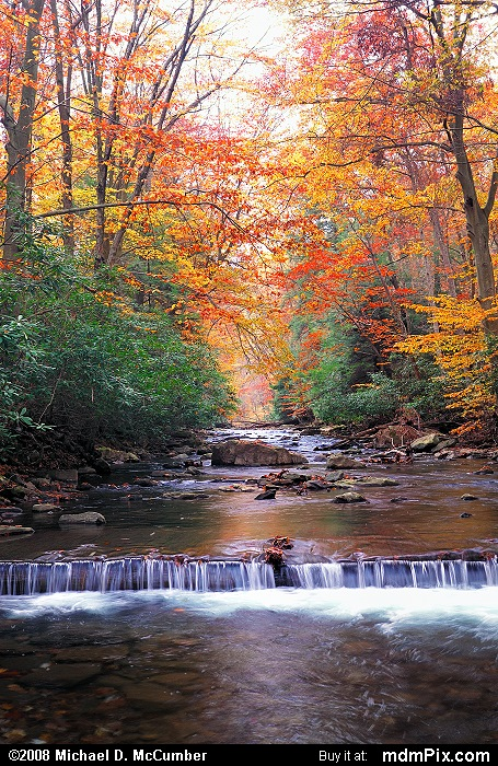 Dunbar Creek (Dunbar Creek Picture 005 - October 25, 2006 from PA State Game Land 51)