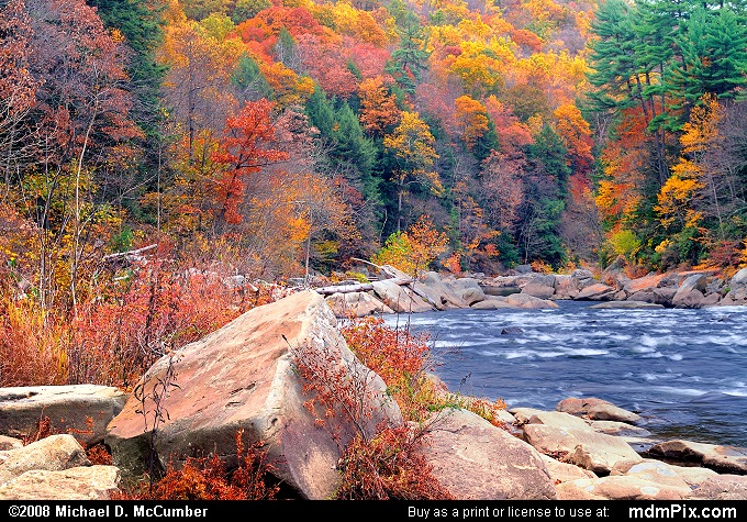 Youghiogheny River (Youghiogheny River Picture 051 - October 25, 2006 from Ohiopyle State Park, Pennsylvania)