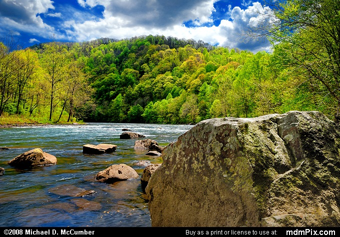 Youghiogheny River Rock and Spring Foliage