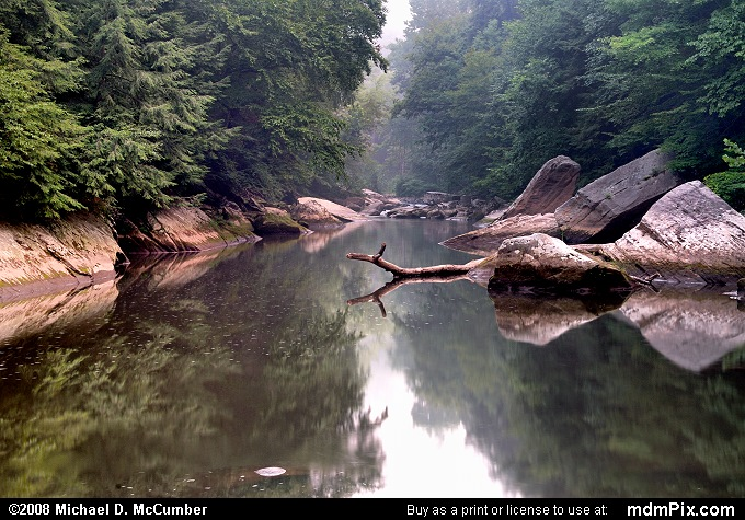 Slippery Rock Creek In A Sultry August Morning Picture