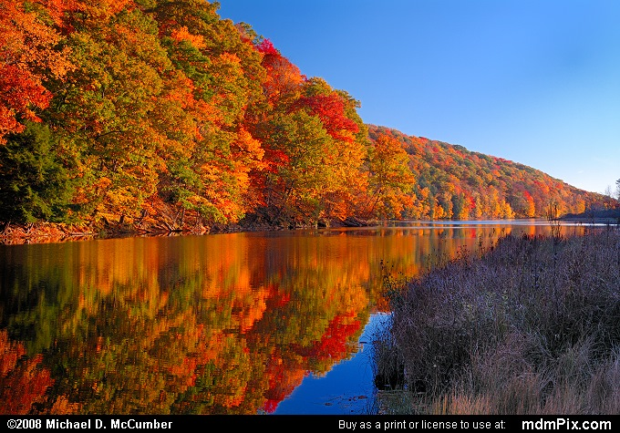 Laurel Hill State Park Brilliant Fall Reflections