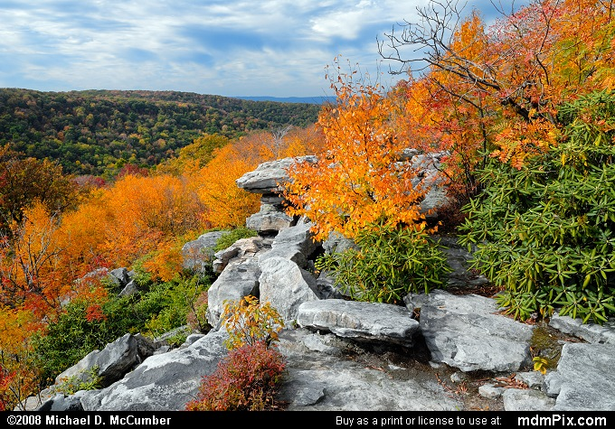 View from Wolf Rocks Overlook in Autumn