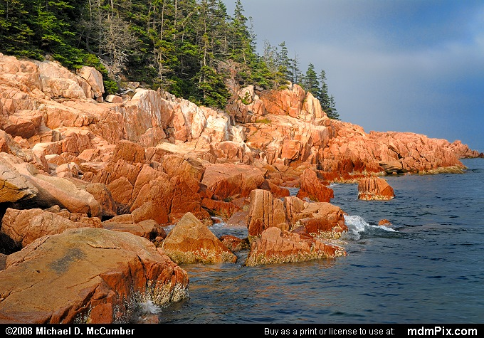 Acadia's Coast of Pink Granite Rock