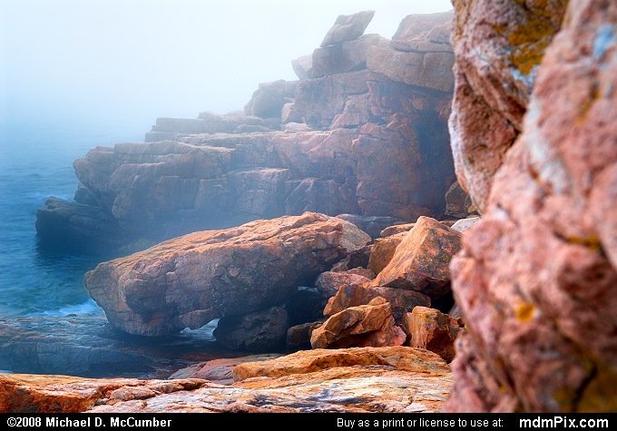 Pink Granite Rock at Acadia's Coast in Fog
