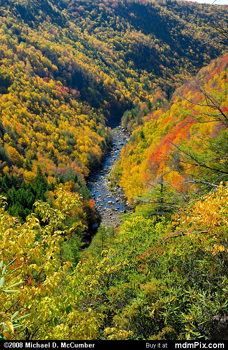 Blackwater Canyon (Blackwater Canyon Picture 019 - October 7, 2008 from Blackwater Falls State Park, West Virginia)