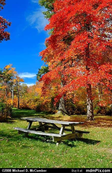Picnic Table (Picnic Table Picture 017 - October 12, 2008 from Mt. Davis Natural Area)