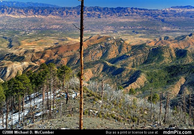 Mount Lemmon Aspen Vista's View East