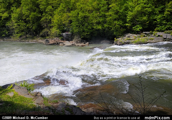 Ohiopyle Falls (Ohiopyle Falls Picture 002 - May 10, 2009 from Ohiopyle State Park, Pennsylvania)