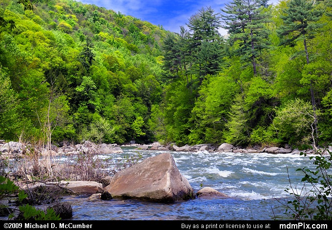 Youghiogheny River (Youghiogheny River Picture 011 - May 10, 2009 from Ohiopyle State Park, Pennsylvania)
