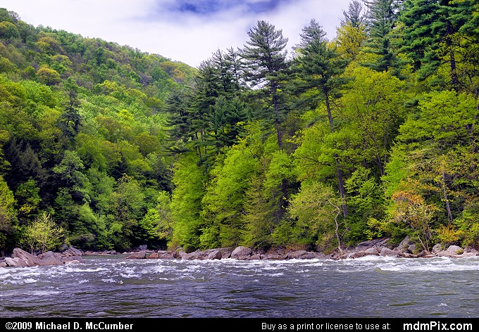 Youghiogheny River (Youghiogheny River Picture 012 - May 10, 2009 from Ohiopyle State Park, Pennsylvania)