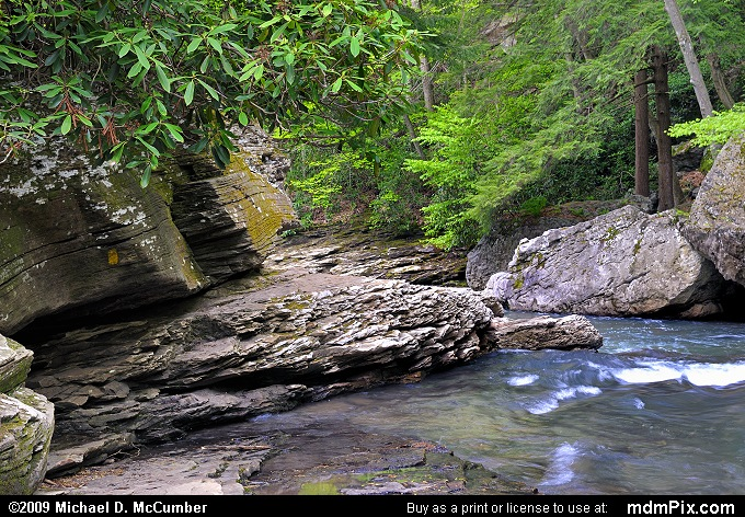 Meadow Run (Meadow Run Picture 040 - May 10, 2009 from Ohiopyle State Park, Pennsylvania)