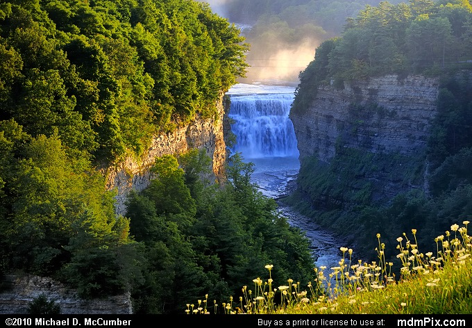 Inspiration Point's View of Genesee River Gorge